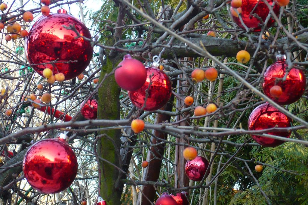 Boules De Noel A Decorer Fruit De Pins