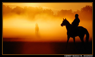 A Horse and the Ghost of One | by Rock and Racehorses
