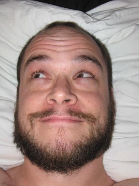 close beard styles viking beard close up flickr photo sharing. Black Bedroom Furniture Sets. Home Design Ideas