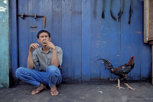 Portrait of man and rooster, Indonesia | by World Bank Photo Collection