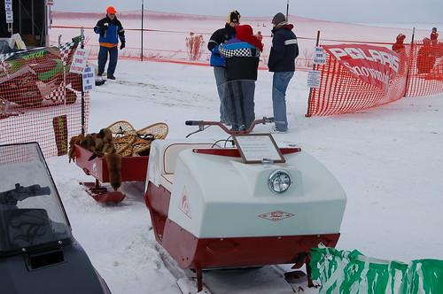 Arctic Cat Hood Screens