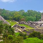 Mexico-2669 / Palenque