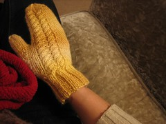 071202. first side-cable butter mitten! | by Famous the Cat