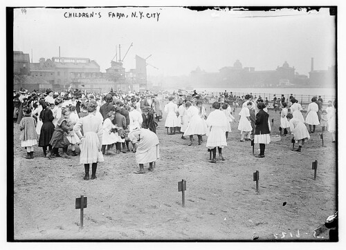 Children's Farm, N.Y.C.  (LOC) | by The Library of Congress