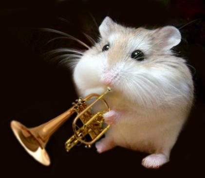 Jazz Mouse | Richard Scott | Flickr