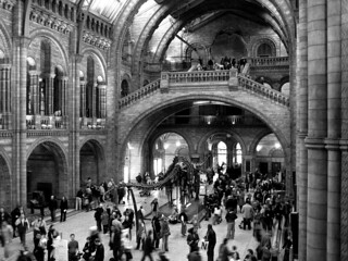 the natural history museum | by _melanieee