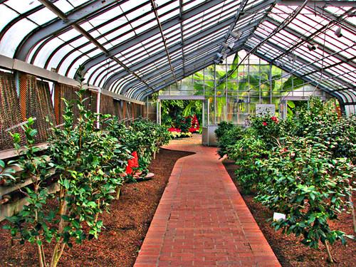 Birmingham Alabama Botanical Gardens | From the camellia gar… | Flickr