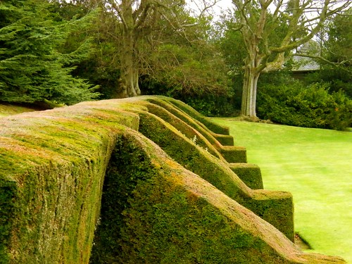 HILL OF TARVIT MANSION HOUSE GARDEN HEDGES CUPAR FIFE | by blawjaws