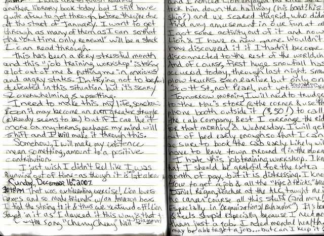 go ask alice essay questions