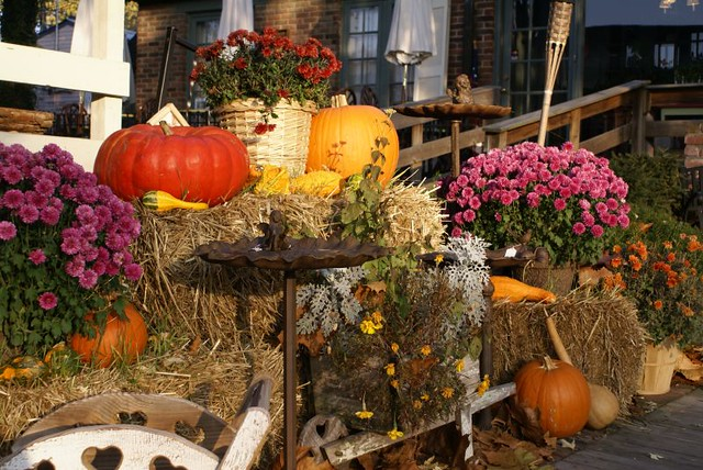 Fall Decorations In Nashville Valerie Everett Flickr