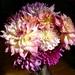 A Farewell Bouquet From Our Garden