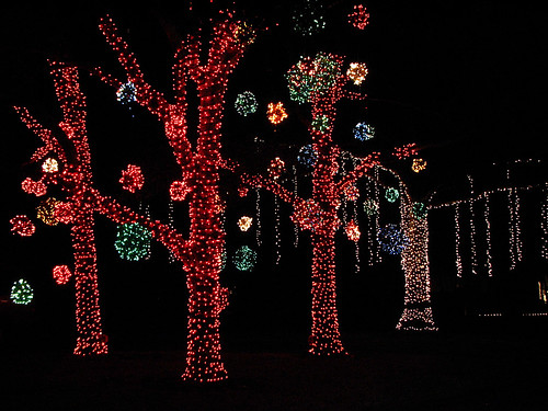 Tanglewood Lights.. | by cpm1