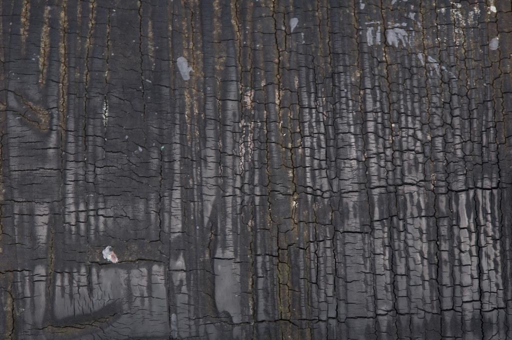 Burned Wood Texture Burned Wood Texture Used Www