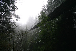 Capilano Suspension Bridge | by James Patterson