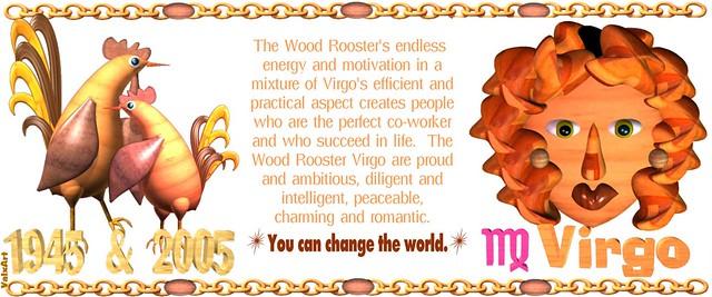 horoscope 2005 virgo: