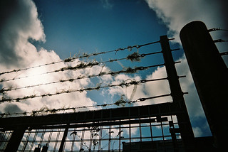 Barbed Wire | by teotwawki