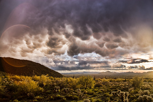 Winter Storm - Arizona - Landscape | by dtedesco