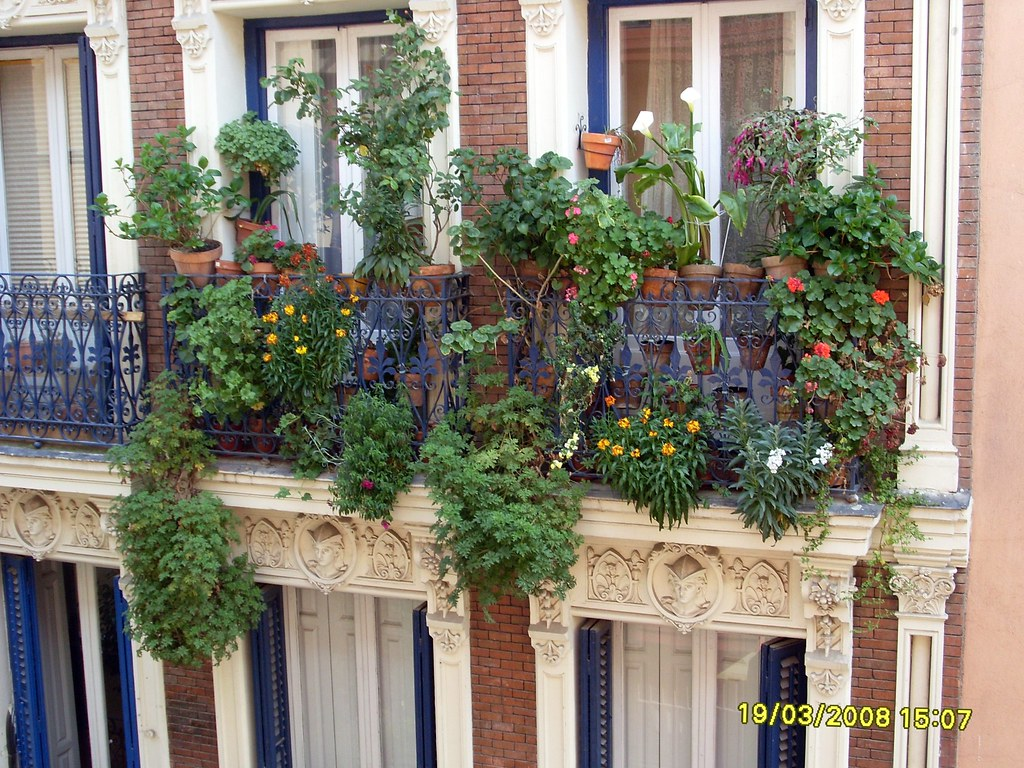 Balcony Decoration Pictures