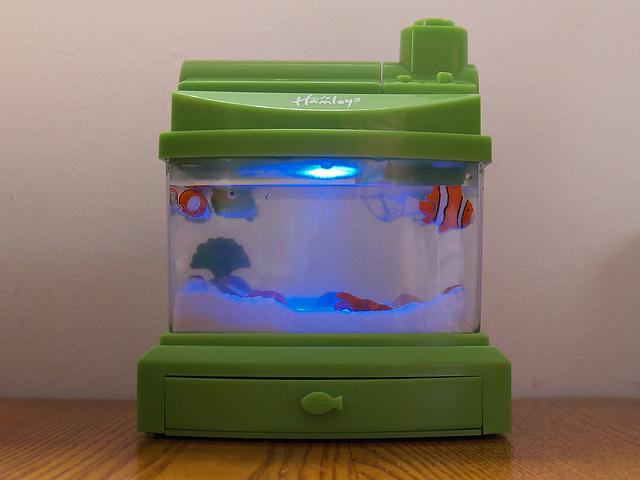 Fish tank flickr photo sharing for Fish tank camera