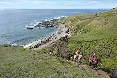 Descubrir Ushuaia a caballo