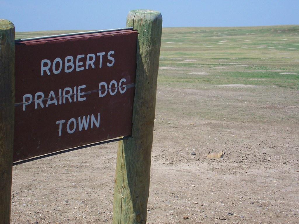 Badlands National Park Roberts Prairie Dog Town Bruce Johnson