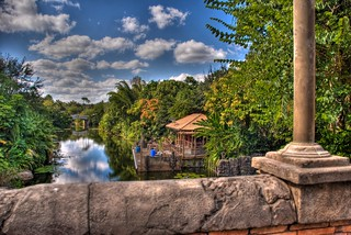 Animal Kingdom - View From the Bridge | by Etrusia UK