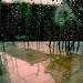 lluvia gozosa