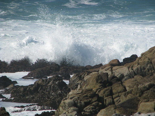 asilomar splash favorite 1 | by AmyKay1974