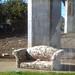 reflecting on sofafree