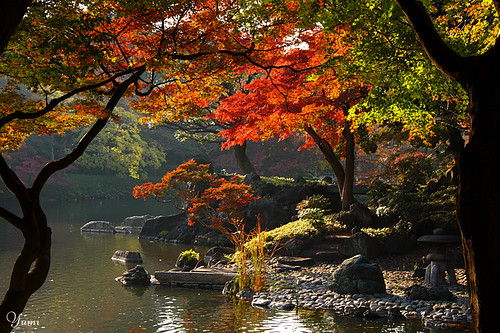 autumn Japanese garden | by * Yumi *