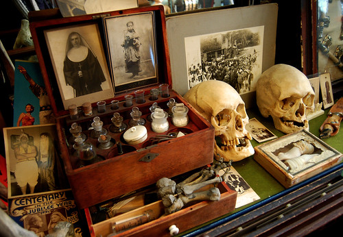 Skull Shelf | by Curious Expeditions