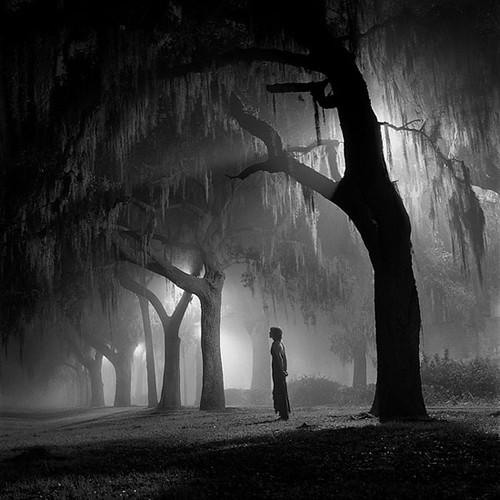 Amanda & the Spanish Moss | by Eddie O'Bryan