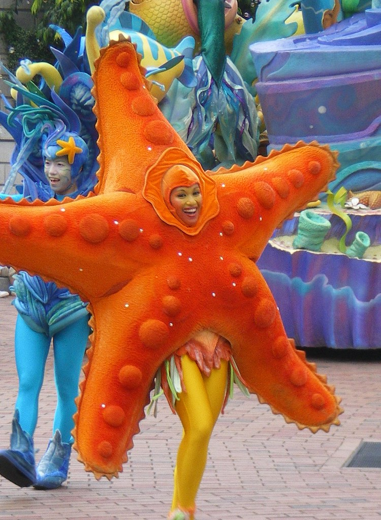 How To Make Fish Costume At Home