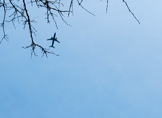 365/86  Tree plane sky | by justmakeit