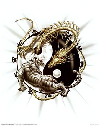 dragon tiger yin yang | Miriam Carnley | Flickr