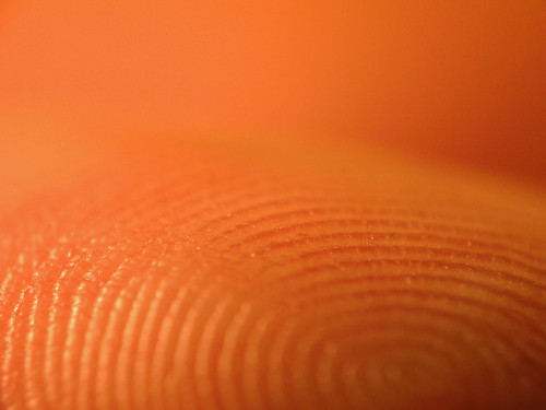 how to get mold from fingerprint