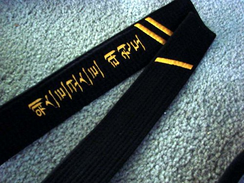 second degree black belt essays Master garwood's biography during his tenure in cashmere, master garwood was promoted to 2nd degree black belt in january of 1995.