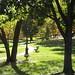 Watson Park, Oct 2007