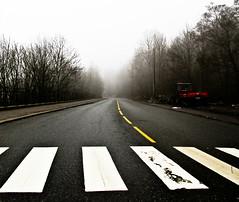 Misty mornin', don't see no sun..