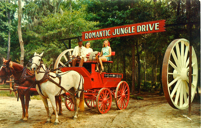 Postcard of suwannee river jungle gardens 1950s a buggy for Jungle furniture white river