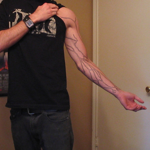 Arm Veins Vein Tattoo Submitted By Curtis Street Anatomy Flickr