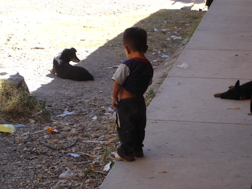 this little boy was peeing in the courtyard | larubes | Flickr