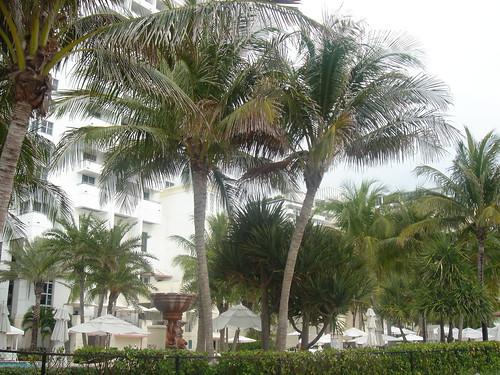 Loews Miami Beach Hotel  Collins Avenue