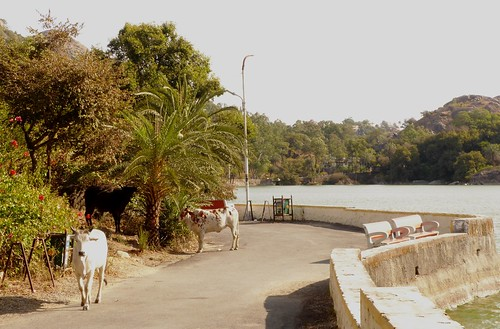 i-mount abu-lac-am (13)