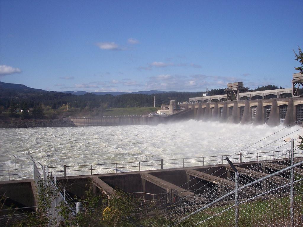 Bonneville dam and fish hatcherie spillway at the for Bonneville dam fish camera