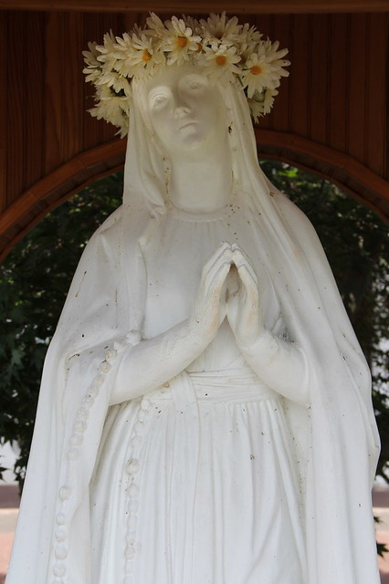 Virgin Mary With Crown Of Flowers  Flickr - Photo Sharing-5108