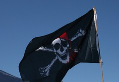 Pirate Flag! | by CannedTuna