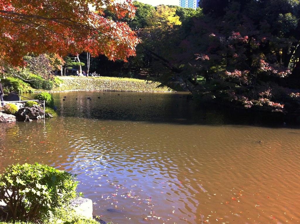 Koishikawa Korakuen Garden_03