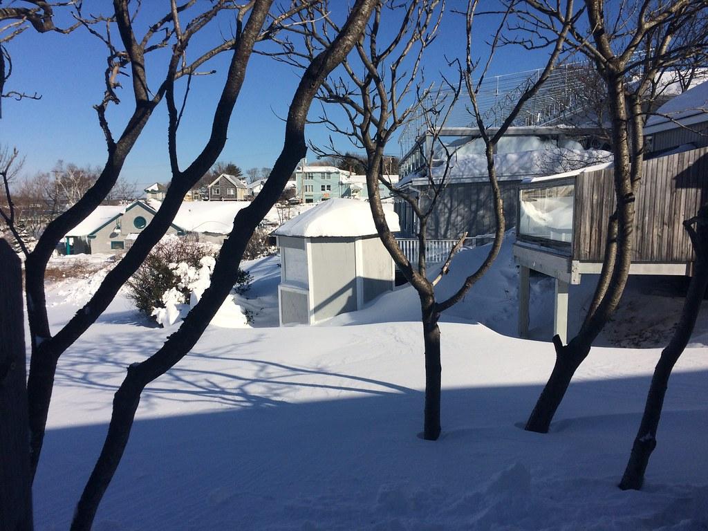Peaks Island Winter Rentalsbailey Island Maine House Rentals