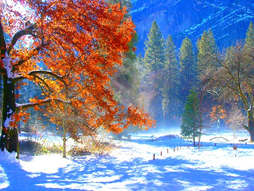 Yosemite Fall Colors in Winter | by wbirt1